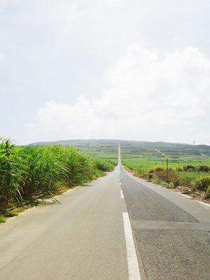喜界島の一本道